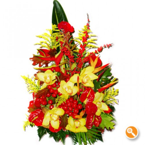 Arranjo com Orquídea - Alegria